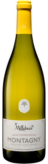 Montagny Blanc Millebuis 2013