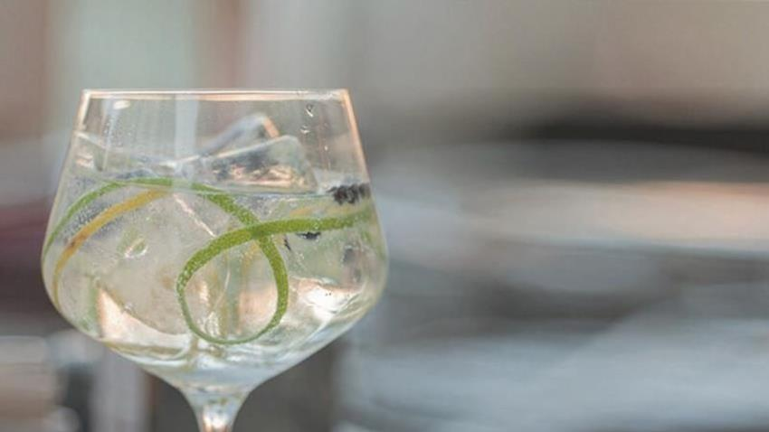 World Gin Day Tonic.JPG