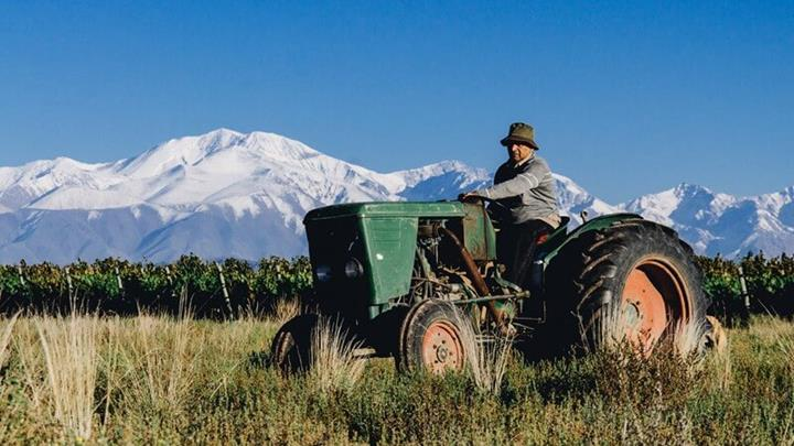 Argentine Winemaking.JPG