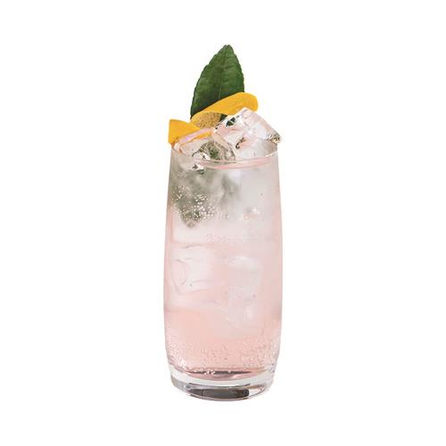 Rhubarb and Ginger Gin & Tonic